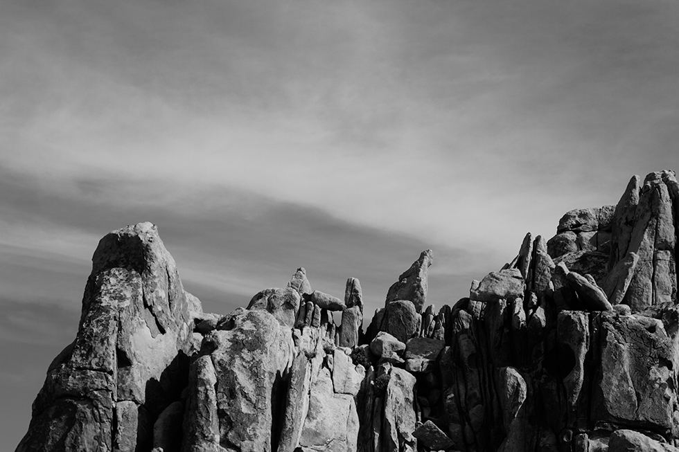 Joshua-Tree-National-Park-Black-White-3