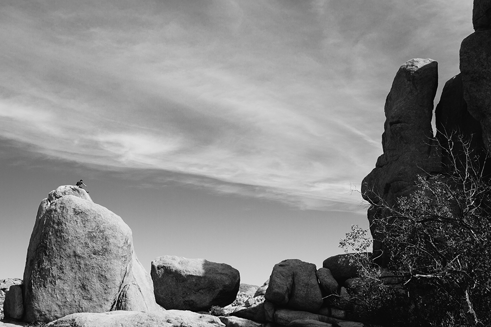 Joshua-Tree-National-Park-Black-White-Mountain-Climbing-10