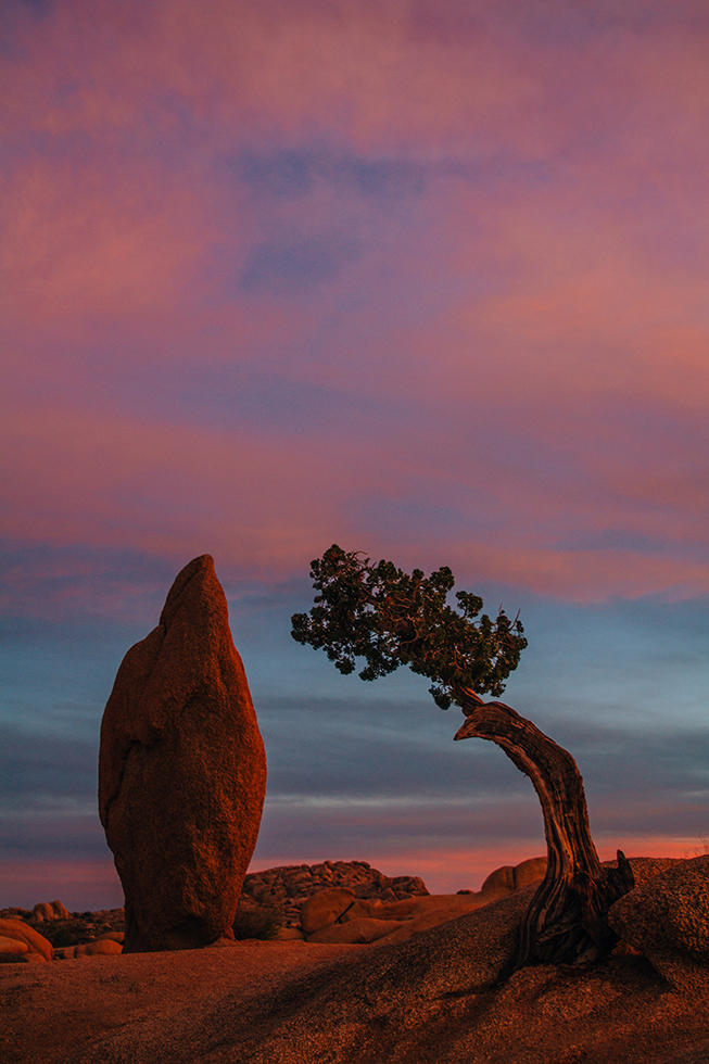 Joshua-Tree-National-Park-Rock-Parallel-Sunset-26