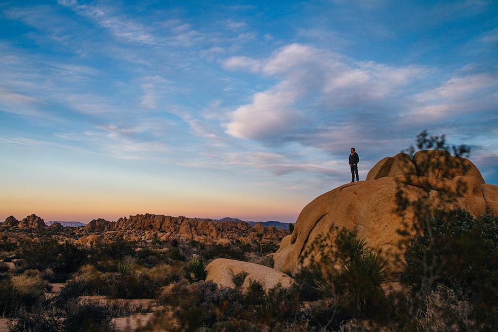 Joshua-Tree-National-Park-Sunset-Colors-Portrait-Landscape-18