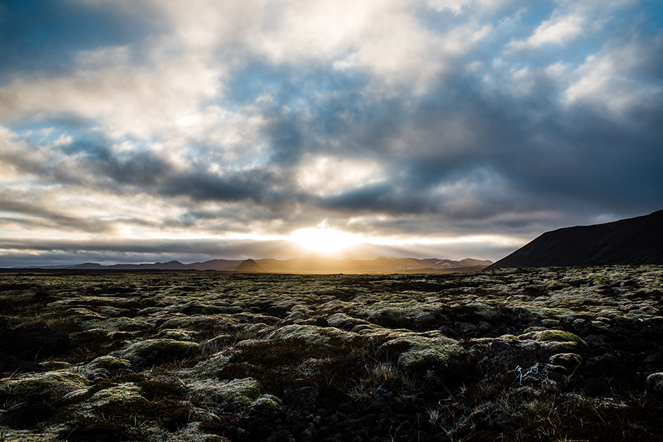 volcanic rock with moss in iceland